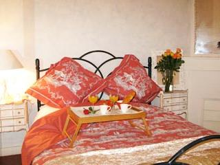 Charming apartment right in the centre of Cannes - 595 - Cannes vacation rentals