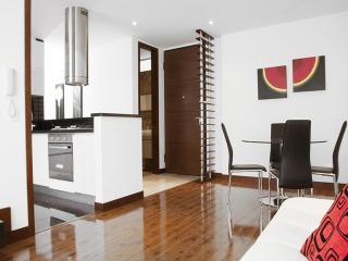 Contemporary 2 Bedroom Apartment in La Carolina - La Calera vacation rentals