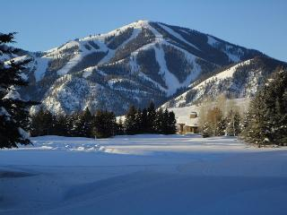 Great 2 bed townhouse. This is the best location in Ketchum! - Ketchum vacation rentals