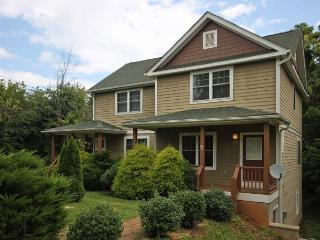 Walk to Downtown, Side B. Sunny, Bright! Wi-Fi, Quiet Neighborhood. - Asheville vacation rentals