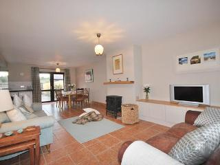 YNA Dingle Cottages - Pebble Cottage - Dingle Peninsula vacation rentals