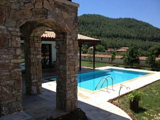 PRIVATE LUXURY VILLA WITH POOL IN AKYAKA / GOKOVA  TURKEY - Gokova vacation rentals