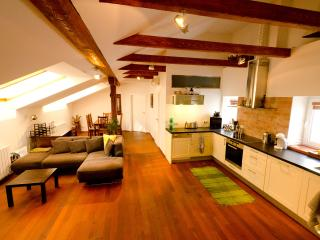 Cozy 2-BDR Top Floor Apt., Sauna Air/Con WiFi Lift - Prague vacation rentals