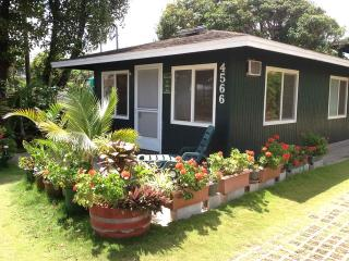 cottage  downtown Kapaa one block to beach access - Kapaa vacation rentals