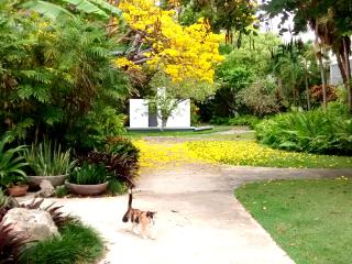 AMPLE GARDEN APT STUDIO NEAR TRAIN IN SAN JUAN - San Juan vacation rentals