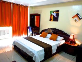 Studio Robinsons Place Manila RPR01 - Manila vacation rentals