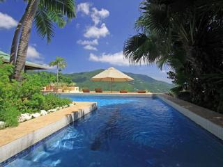 Arundel Villa - Guana Island vacation rentals