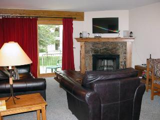 BC West D-1 w/ FREE Skier Shuttle - Avon vacation rentals