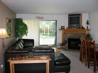 BC West I-1 w/ FREE Skier Shuttle - Avon vacation rentals