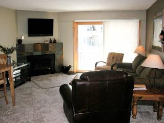 BC West H-1 w/ FREE Skier Shuttle - Avon vacation rentals