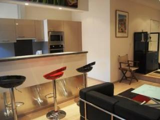 Jaures One Bed (JH) - Cannes vacation rentals