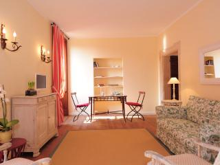 Le Coste Historical Apartment with  Vineyards View - Verona vacation rentals