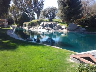 Tranquility by the Waterfall - Indio vacation rentals