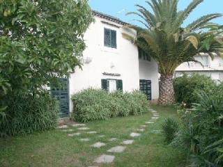 Centenial gorgeous house, Lisbon, 4 miles to beach. - Linda-a-Velha vacation rentals