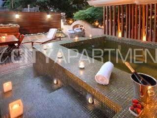 MULTI-LEVEL MASTERPIECE WITH PRIVATE JACUZZ (PT7) - Capital Federal District vacation rentals