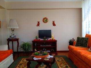 Great 3B/2.5B with Friendly Hosts (Fluent English) - Quito vacation rentals