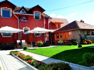 Villa Boska Palic - Palic vacation rentals