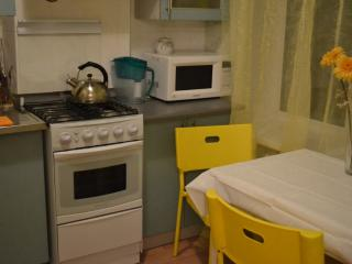 1Bedroom RezidentHotel Frunzenskaya - Central Russia vacation rentals