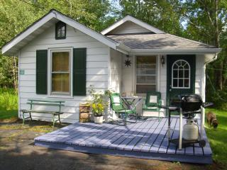 Nice Hunter Cottage rental with Deck - Hunter vacation rentals