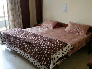 Furnished 2 Bedroom Apartment in Greater Kailash Part 2 , South Delhi . - New Delhi vacation rentals