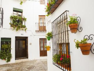 Nice House with Internet Access and A/C - Priego de Cordoba vacation rentals