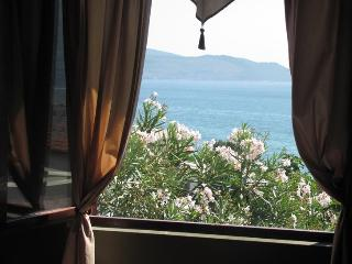 Sea View Apartment minutes from the Igalo beach - Herceg-Novi vacation rentals