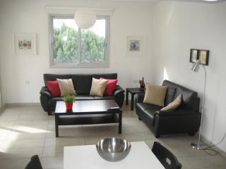 Amazing new central flat at a cheap price - Nicosia vacation rentals