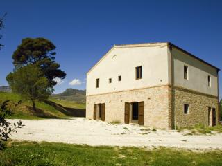 Old stone farmhouse surronded by olive trees - Roccacasale vacation rentals