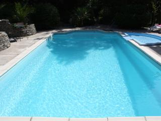 Large Mansion - Heated Private Pools & Hot Tub - Alaigne vacation rentals