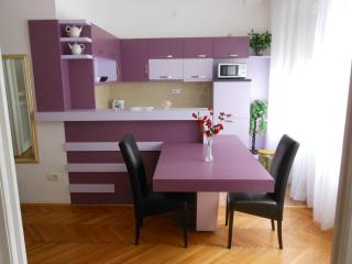 Comfortable apartment in Belgrade - Belgrade vacation rentals