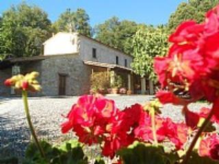 Villa Clemente - Campiglia Marittima vacation rentals