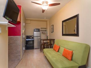 Sleeps 6! 2 Bed/1 Bath Apartment, Times Square, Awesome! (8101) - Manhattan vacation rentals