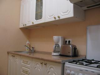 apartment near subway Mahileuskaja - Minsk vacation rentals