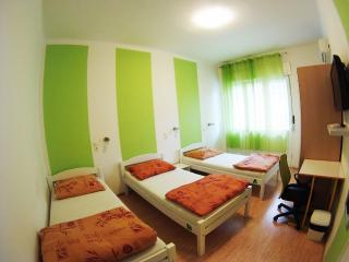 CroParadise True Green Apartment - Split vacation rentals