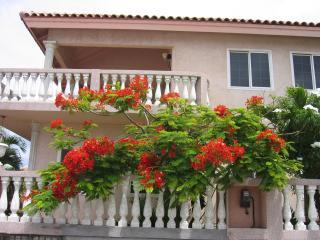 1 bedroom Condo with Internet Access in Oranjestad - Oranjestad vacation rentals