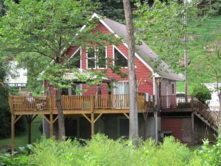 2 Bedroom/2 Bath cottage on river. - Bat Cave vacation rentals