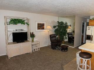 Nice 2 bedroom Apartment in Saint George - Saint George vacation rentals