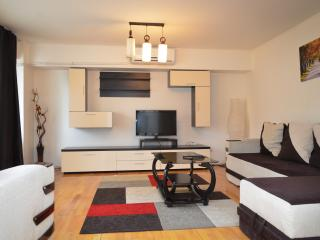 Romantic 1 bedroom Condo in Bucharest - Bucharest vacation rentals