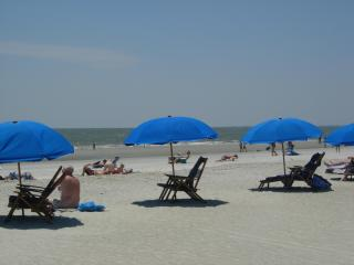 Very Affordable Ocean View,50 Yards To The Beach! - South Carolina Island Area vacation rentals