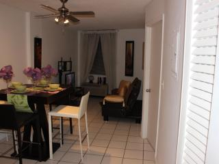 Beautiful 1 bedroom Aptm in South Beach - Miami Beach vacation rentals