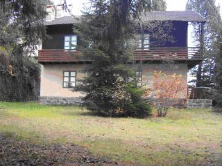 Villa Costalta - Roncegno vacation rentals