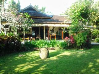 Peaceful bungalow in the middle of ricefields: Kel - Bali vacation rentals