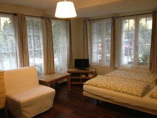 CityChalet historic Studio Apartment - Goldswil vacation rentals