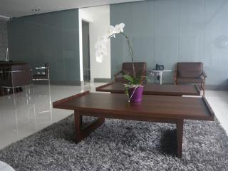 Luxury ocean view  2 bedrooms apartment for rent - Santo Domingo vacation rentals