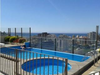 Pleno Centro Viña 2D/2B+Parking - Vistas Caminable - Vina del Mar vacation rentals