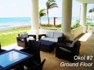 3 BDM APT, INCREDIBLE SEA VIEW, GET THE 7a NT FREE - Playa Paraiso vacation rentals