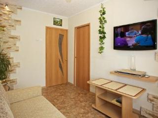 Small 2 rooms apartment Centre of Kaliningrad - Kaliningrad vacation rentals