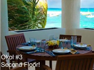Ocean Front Condos Okol A3 - Playa del Carmen vacation rentals
