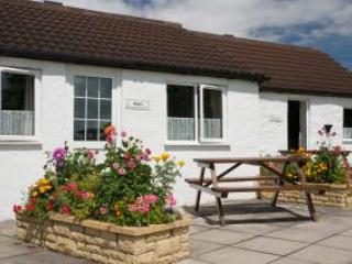 Shire Cottage - Somerset - United Kingdom - West Wick vacation rentals
