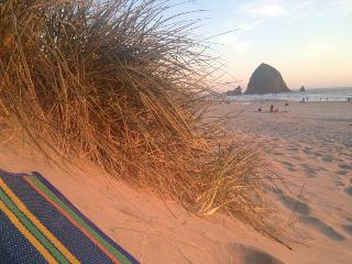 Sand Dune Townhouse - Cannon Beach vacation rentals